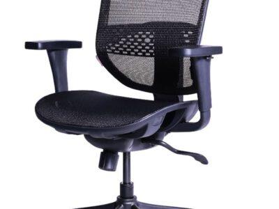 เก้าอี้เพื่อสุขภาพ Ergotrend (รุ่น ERGO-JOY-PRO)