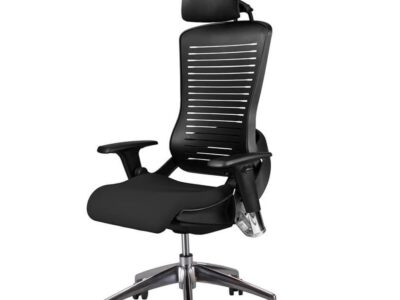 Ergotrend CP5 (Size L) with Headrest (CP5 (Size L) with Headrest)