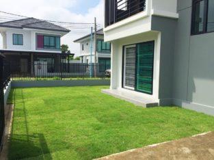 บริการตัดหญ้าและสวนรายเดือน เริ่มต้น 750 บาท/ครั้้ง