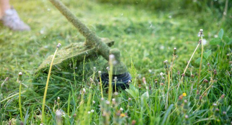 Lawn Mowing 801-1000 Sq.m.